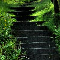 css-first-steps