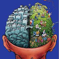 Understanding Your Brain for Better Design: Left vs. Right