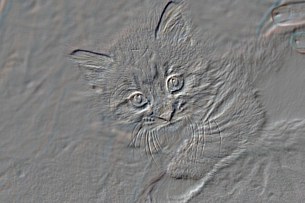 Embossed Kitty